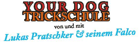 trickschule