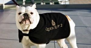 """Ein Modeaccessoire für alle Hunde-Passagiere: Der schwarze Mantel der """"Queen Mary 2"""""""