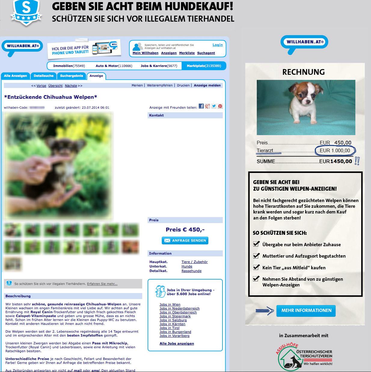 Hunde-Anzeige auf Willhaben