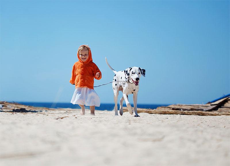 kindhund